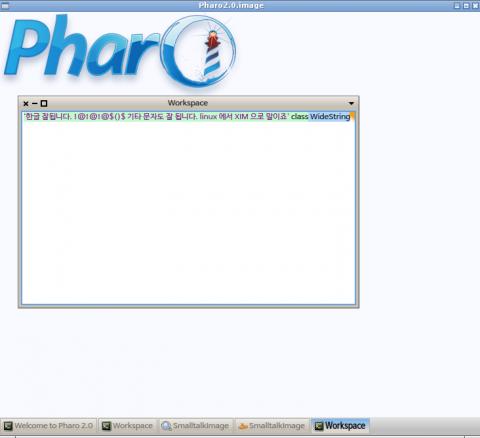 Pharo_XIM_06